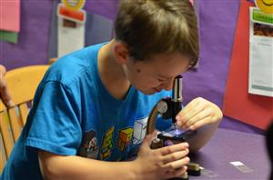 Student looking through the microscope