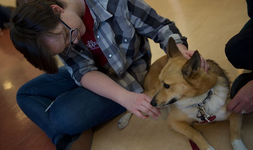FHS visits with therapy dogs