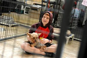 Eighth-grader Cody Witt, 13, pets a rescued dog at the National Dog Mill Rescue March 11 in Peyton, Colo.