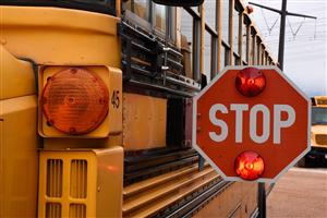 Drivers are required by law to stop when a school bus stop sign is out and red lights are flashing.