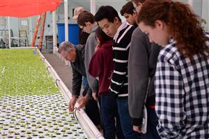 Julian , SCHS freshman, looks on at the Youth With A Mission aquaponics facility in El Paso County.