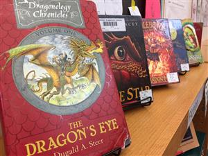 Books about dragons sit on bookshelves in the Odyssey Elementary School library March 16.