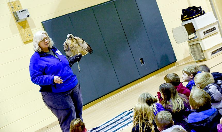 Diana Miller from Raptor Center