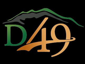 d49 graphic