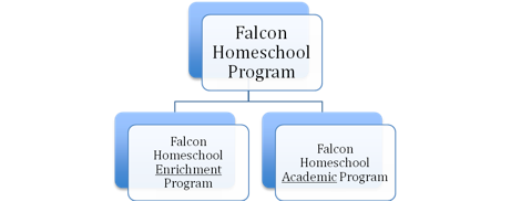 Falcon Homeschool Overview